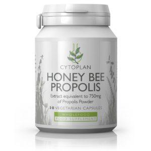Cytoplan Honey Bee Propolis – tugevatoimeline toidulisand taruvaigu ekstraktiga