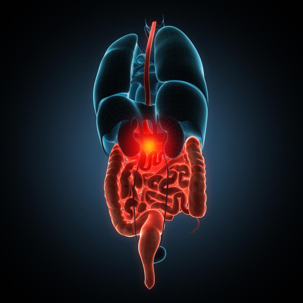 Kroonilised soolepõletikud – koliit ja Crohni tõbi