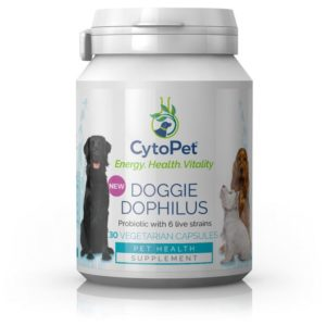 PIIMHAPPEBAKTERID KOERTELE, CytoPet Doggie Dophilus, 30 kapslit